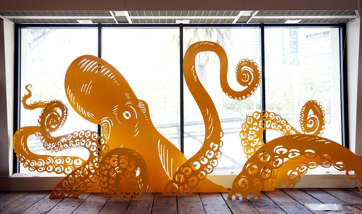 Ideo Sf Octopus 04
