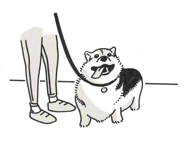 Maximize Your Commute Doggo